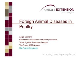 Foreign Animal Diseases in Poultry Angie Dement Extension Associate for Veterinary Medicine