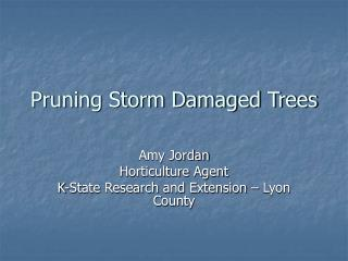 Pruning Storm Damaged Trees