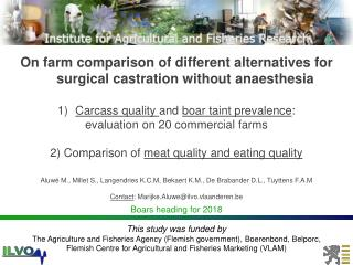On farm comparison of different alternatives for surgical castration without  anaesthesia