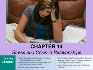 CHAPTER 14 Stress and Crisis in Relationships