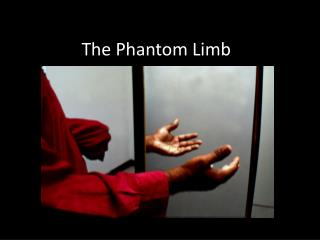 The Phantom Limb