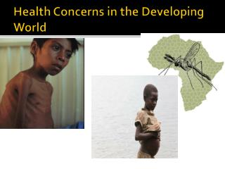 Health Concerns in the Developing World