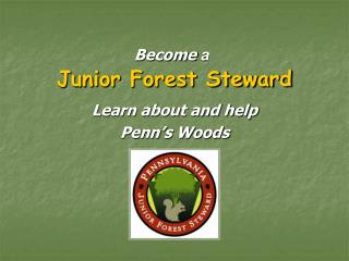 Junior Forest Steward