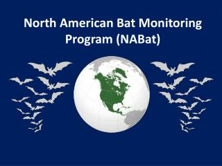 North American Bat Monitoring Program ( NABat )