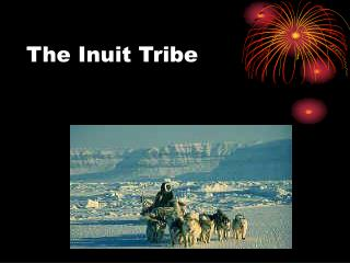 The Inuit Tribe