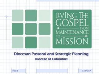Diocesan Pastoral and Strategic Planning Diocese of Columbus