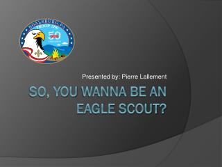 So, you  wanna  be an eagle Scout?
