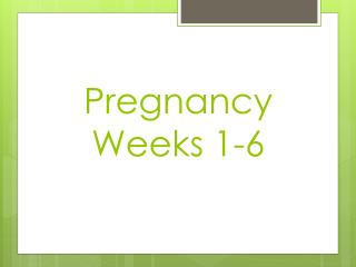 Pregnancy Weeks 1-6