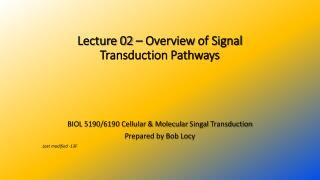 Lecture  02 –  Overview  of Signal Transduction Pathways