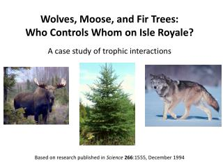 Wolves, Moose, and Fir Trees: Who Controls Whom on Isle Royale?