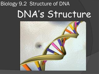 Biology 9.2  Structure of DNA