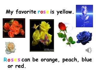 My favorite      is yellow.