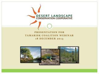 Presentation for Tamarisk coalition webinar 18 December 2013