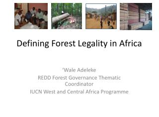 Defining Forest Legality in Africa