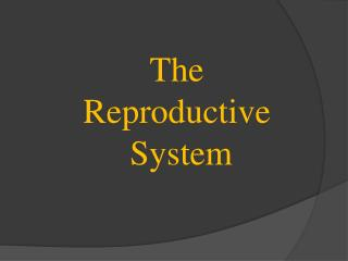 T he Reproductive S ystem