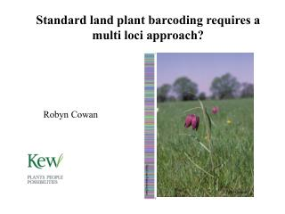 Standard land plant barcoding requires a multi loci approach