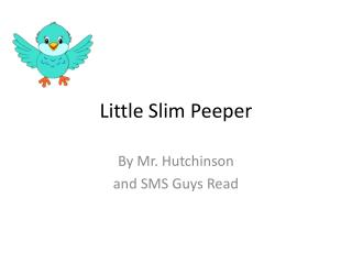 Little Slim Peeper