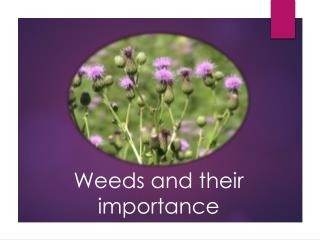 Weeds and their importance