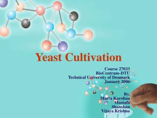 Yeast Cultivation