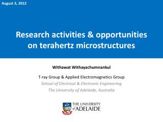 Research activities & opportunities on terahertz microstructures