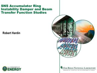 SNS Accumulator Ring Instability Damper and Beam Transfer Function Studies
