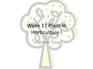 Week  11  Plant Id Horticulture I
