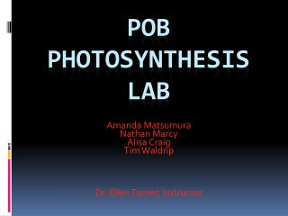POB Photosynthesis Lab
