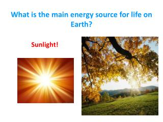What is the main energy source for life on Earth?