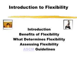 Introduction to Flexibility
