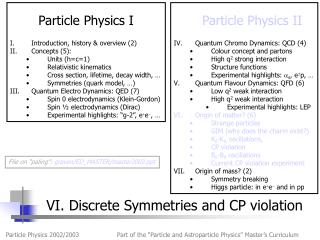 VI. Discrete Symmetries and CP violation