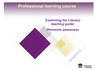 Professional learning course