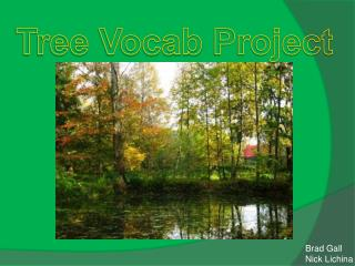 Tree  Vocab  Project