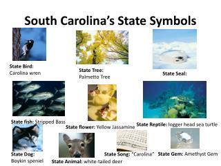 South Carolina's State Symbols