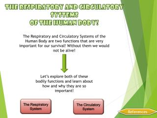 The Respiratory and Circulatory Systems  of  the Human Body!