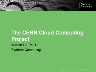 The CERN Cloud Computing  Project