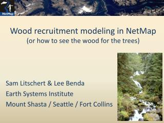 Wood recruitment modeling in NetMap (or how to see the wood for the trees)