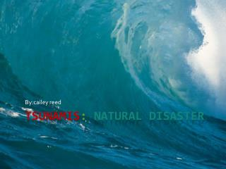 tsunamis : Natural disaster