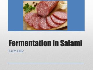 Fermentation in Salami