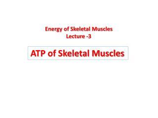 ATP of Skeletal Muscles
