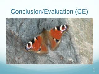 Conclusion /Evaluation (CE)