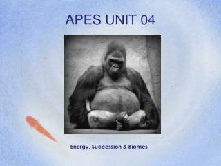 APES UNIT 04
