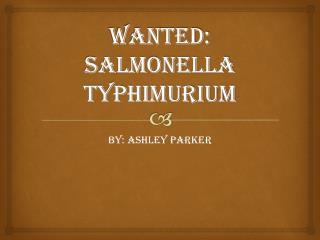 WANTED: Salmonella  typhimurium