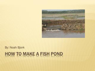 How to Make a fish pond