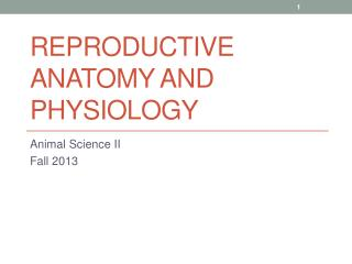 Reproductive anatomy and physiology