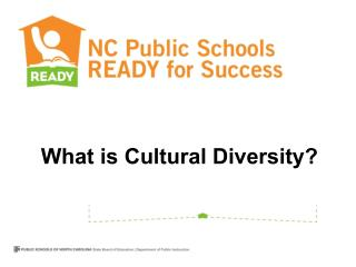 What is Cultural Diversity?
