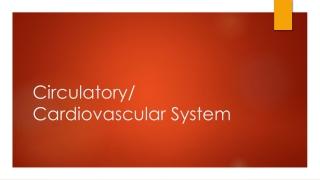 Circulatory/ Cardiovascular System