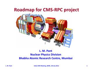 Roadmap for  CMS-RPC  project