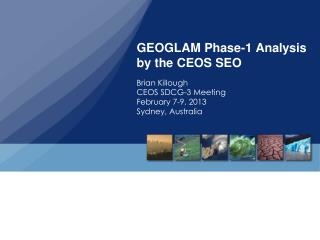 GEOGLAM Phase-1 Analysis  by the CEOS SEO