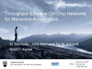 Throughput-Effective On-Chip Networks for  Manycore  Accelerators
