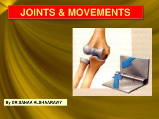 JOINTS & MOVEMENTS